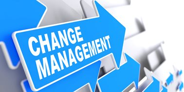 Change Management Strategies for Successfully Implementing a New HCM System